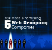 Top 5 Most Promising Web Designing Companies 2014