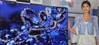 Samsung Unveils Premium TV Models