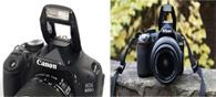 Best Cameras For Amateur Photographers