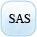 SAS course