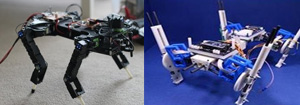 Quadruped Robot Change Steps With Speed