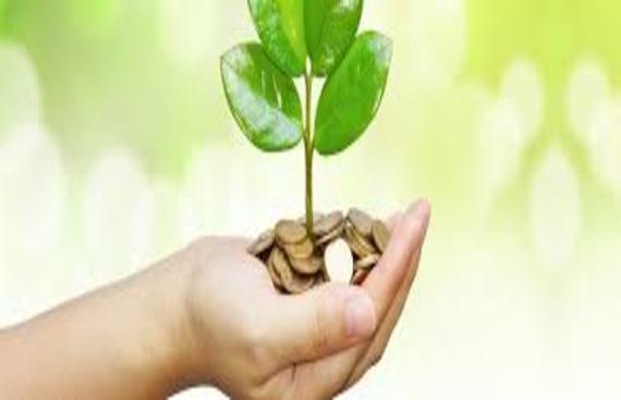 India's Single Largest Horizontal Seed Stage Platform, IAN Funds Wizikey