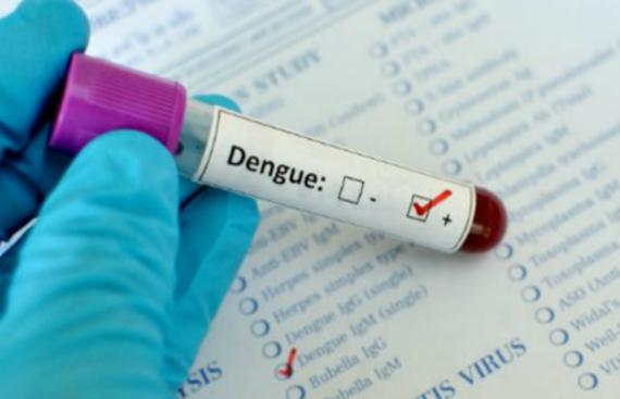 Dengue Fever Incidence Up in India
