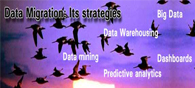 Data Migration: Its Strategies