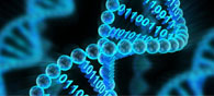 Microsoft Plans To Store Data In DNA