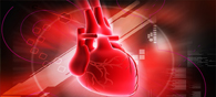 New Drug Effective In Treating Heart Failure