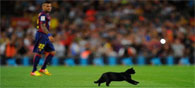10 Funniest Yet Weird Superstitions in Sports