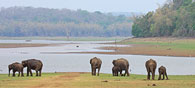 Five Places Mandatory to Visit before Monsoons