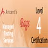 Aricent Bags Level 4 Certification