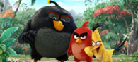 The Angry Birds Movie': Colourful And Engaging