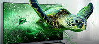 Best Entertaining LED TVs Available Online Below 20K