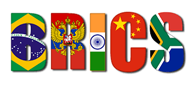 BRICS Members To Set Up Joint Task Force On Disaster