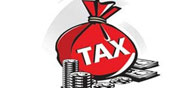 India to Meet Tax Collection Target: Government