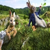 'Peter Rabbit' a good, funny, emotional film: Director