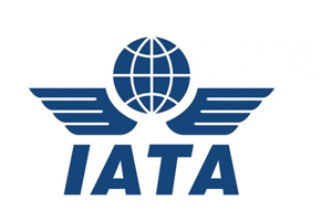 India To Fly 442 Mn Pax By 2035, To Be 3rd Largest Aviation Market By 2026: IATA