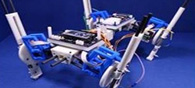 Quadruped Robot Can Change Steps With Speed