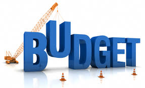 Post Budget: Online Startup's and Ecommerce Reactions