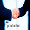 Job Opportunities across India Are On a Rise: Report