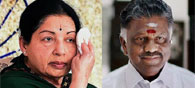 Quick Facts About the New Successor of the Throne: Paneerselvam