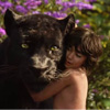 Indian-American Neel Sethi Shines In 'The Jungle Book' Trailer