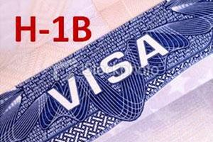 American Senator Seeks Reform In H-1B Visa System