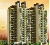 The Coralwood-Sector-84 Gurgaon