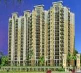 Oasis My Home by Oasis Group