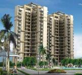 Sidhartha NCR Green-Sector-95 Gurgaon