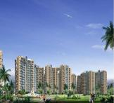 Amrapali Terrace Homes - Noida Extension. Amrapali