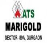 ATS Marigold-Gurgaon