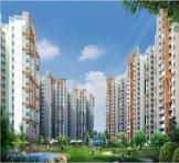 Amrapali Spring Meadows-Noida Extension
