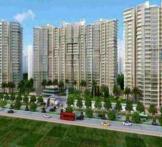 Gayatri Life- Noida Extension