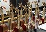 Trophies & Certificate