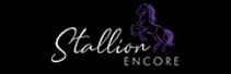 Stallion Encore:  Creating Human Experience in a Digital World