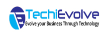 TechiEvolve : Empowering Businesses with Smart Technology