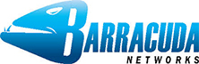 Barracuda Networks: Catalyzing a Paradigm Shift in the Enterprise Storage Terrain