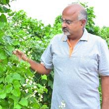 Madhusudhan S,Chief Farmer & Founder