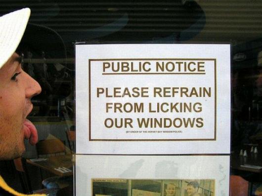 No Window Licking