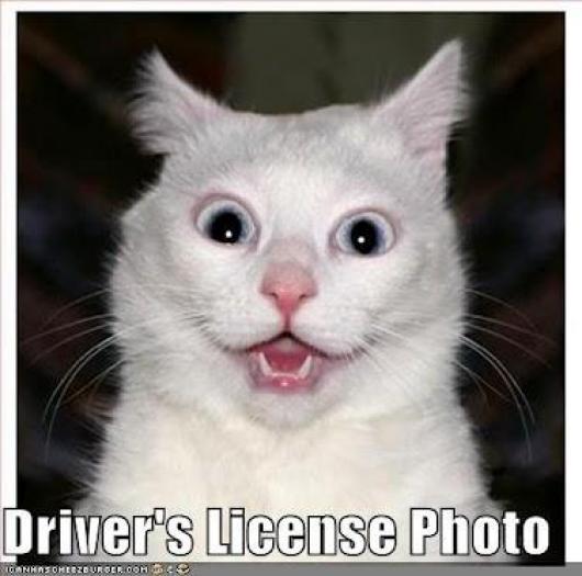 Driver's Lisence Photo