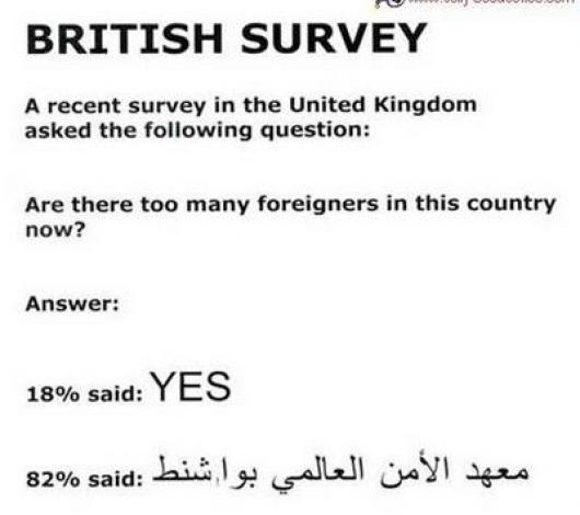 British Survey