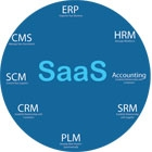SaaS Enter the Blue Ocean