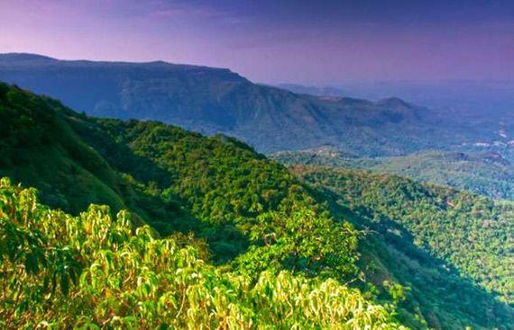 India, China contribute most to global greenery: NASA