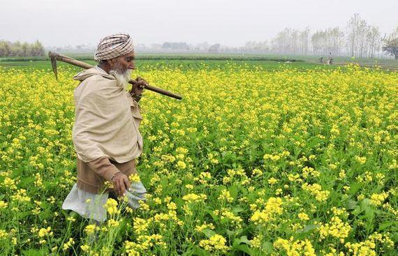 Punjab Investors Summit to Focus on Agriculture Modernisation