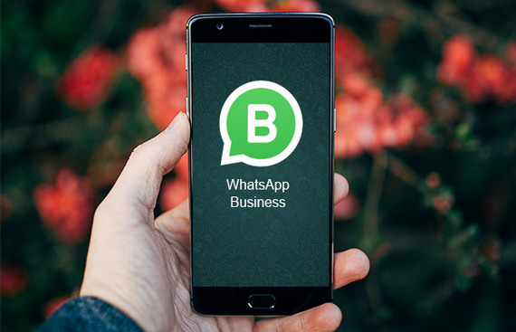 WhatsApp All Set to Expand its Partnership with Business Solution Providers