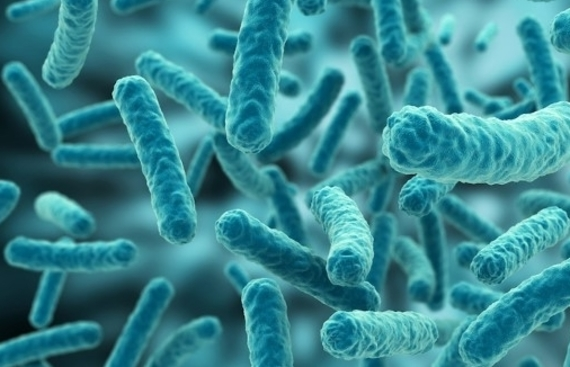Microbiome Analytics Startup 'bitBiome' Bags $6.6 Million in Series B Funding