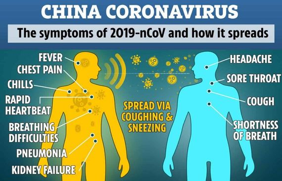 Everything You Need to Know About the Coronavirus