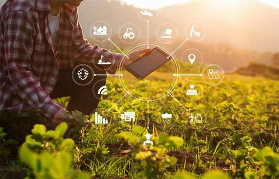Agritech Startups are Using Technology In the Distressed Farming Sector