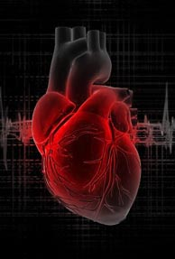 Now, tweet your heartbeat with Akiduki Pulse
