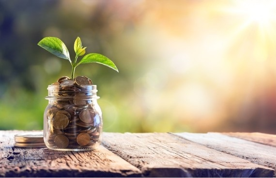 The India Accelerator Intends to Pick 100 Startups for Seed Funding in 2021