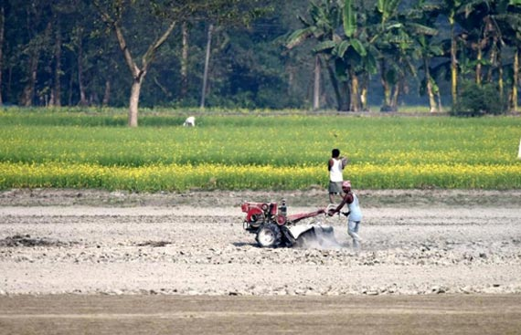 Agriculture Infra Fund to be available for APMC mandis: FM